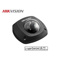 Hikvision 2MP Mini-Dome Network Camera (Black)