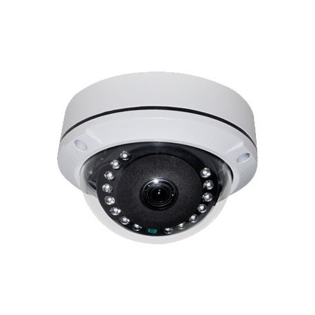2.4 Megapixel 4 IN 1 WDR / IR Dome  - B/W