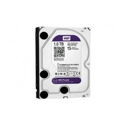 1 TB Purple Hard Drive